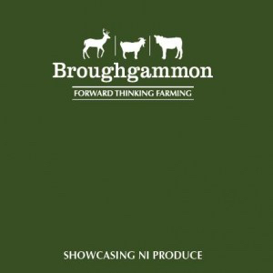 broughgammon farm cookbook front